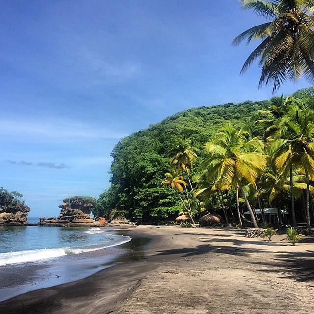 Good day #paradise! #StLucia #luxury #travel #bliss #beauty #palmtrees #ocean #regram @emmajaniekelly