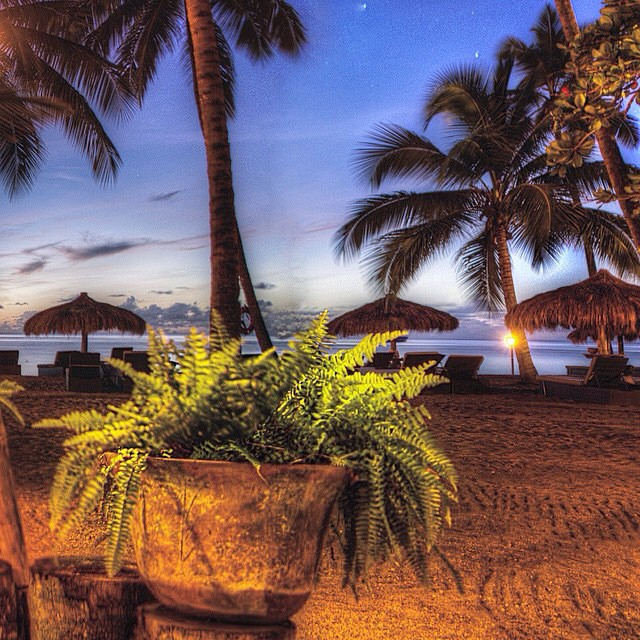 Just another night in #paradise! #luxury #travel #StLucia #AnseChastanet #PalmTrees #beach #ocean #regram @yashalukas