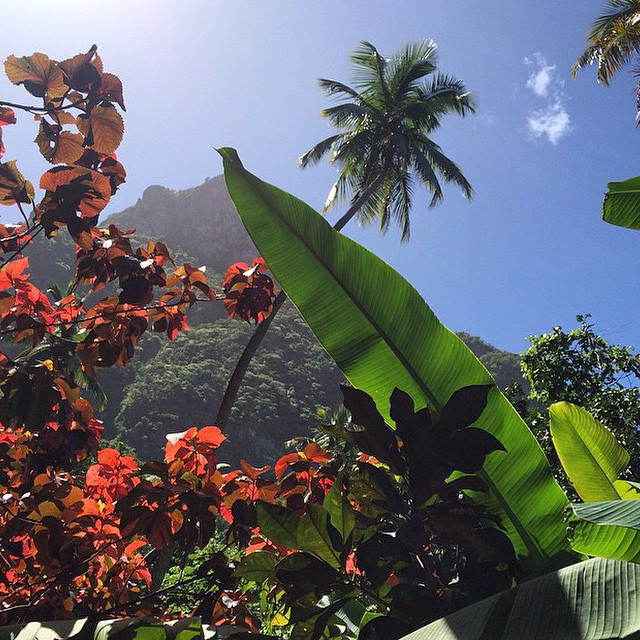 It's been a #stunning weekend in #StLucia! #luxury #travel #beauty #paradise #island #pitons #AnseChastanet