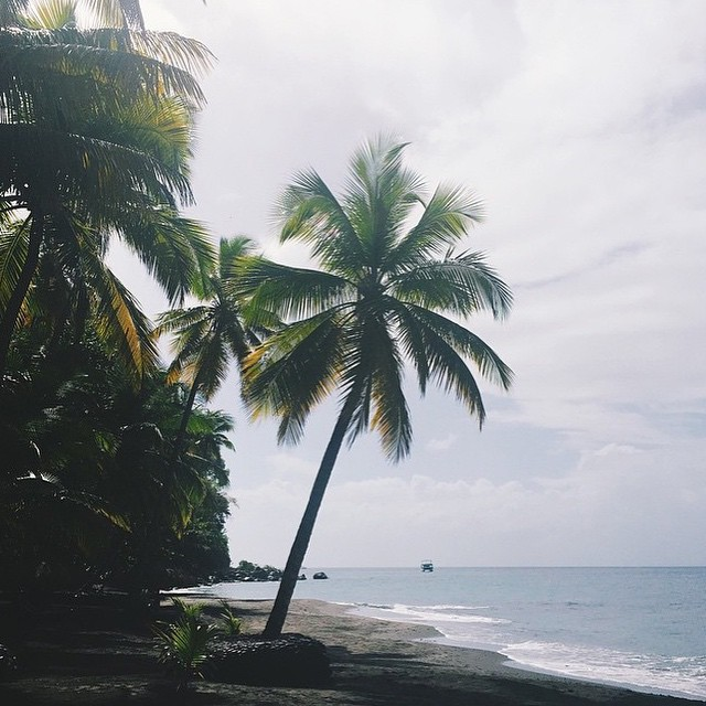 Time to relax and release. #luxury #travel #ansechastanet #palmtrees #ocean #beach #sand #waves #stlucia #saintlucia #blue #sky #paradise #regram @nylonhk